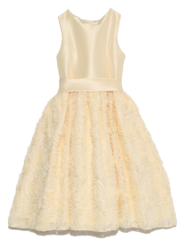 スカートには立体的なフラワーモチーフがとても華やかでゴージャス。愛らしく上品で周りの目を引くこと間違いなしのインポートドレスです。