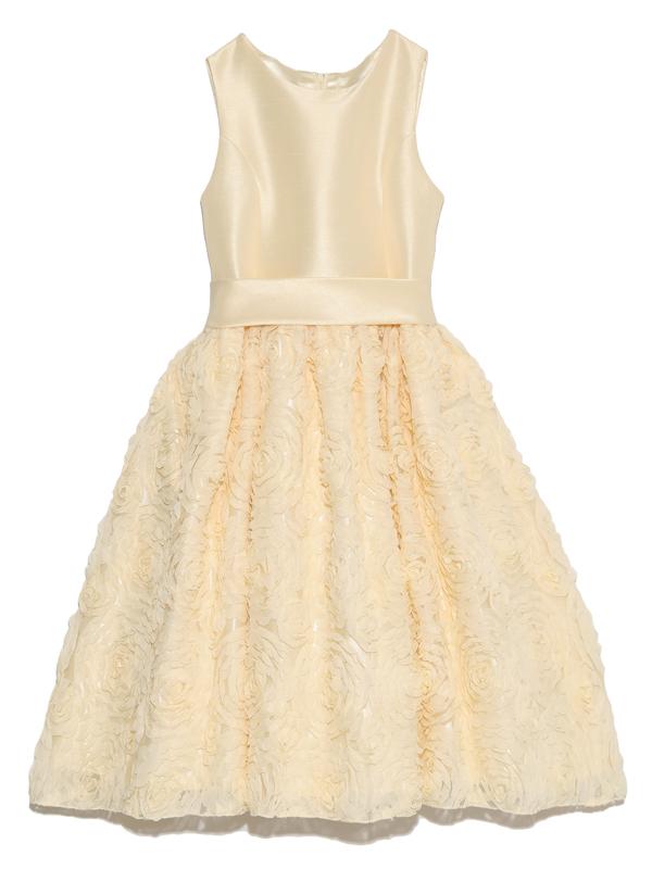 スカートには立体的なフラワーモチーフがとても華やかでゴージャス。愛らしく上品で目を引くこと間違いなしのインポートドレスです。